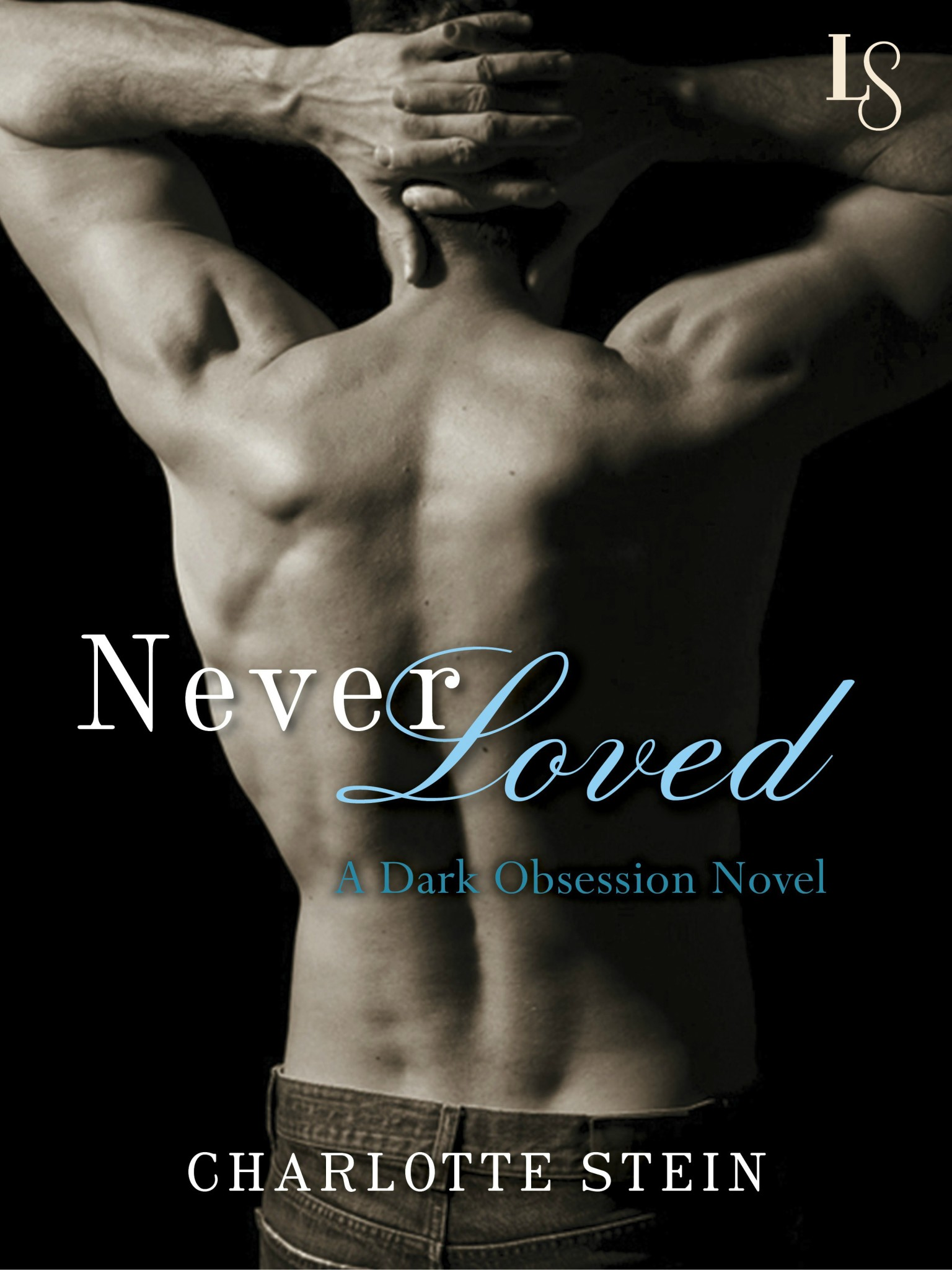 Never Loved Ebook Cover